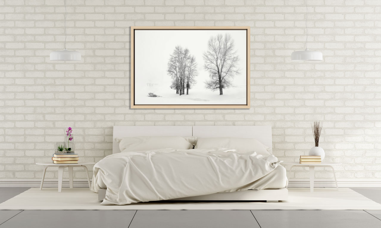 Fine art photo hung on a wall of a bedroom in a design interior. Amar Guillen, Artist Photographer.