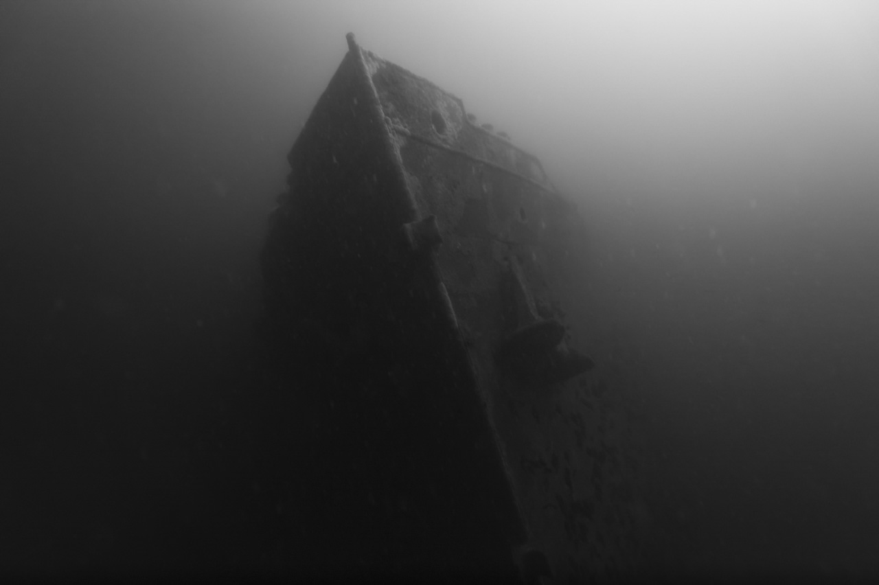 The wreck of Sauerland sunk off the coast of Charente-Maritime in France, Atlantic Ocean.