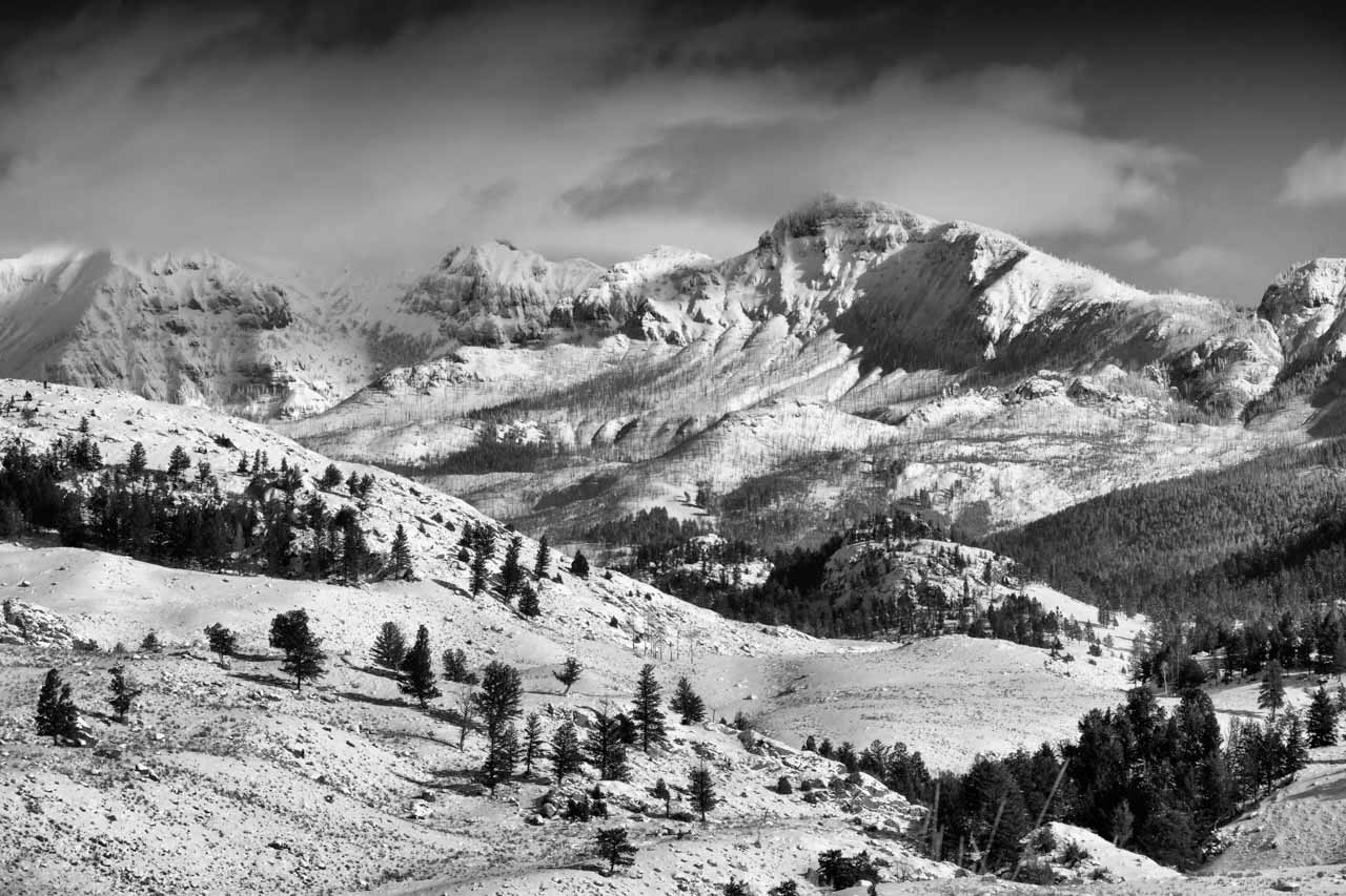 A landscape of Yellowstone in winter.