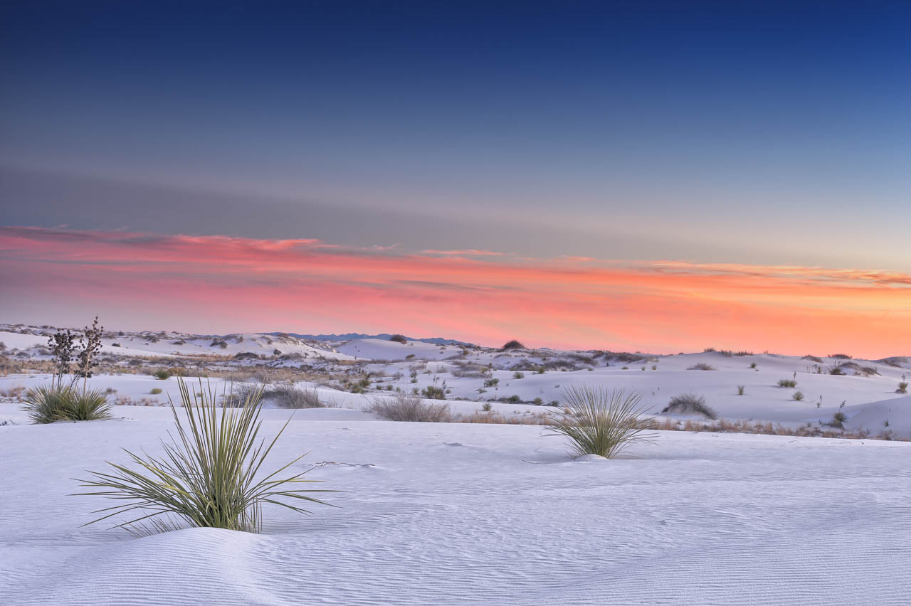 Landscape od the sand desert of White Sans Dunes in New Mexico in United States. Photograph by Amar Guillen, photographer artist.