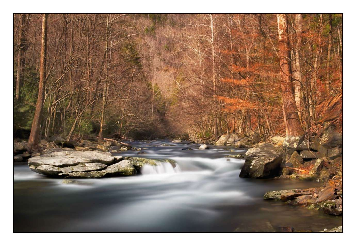 Natural Wonders In The Southern Usa Collection Of Fine Art Photos