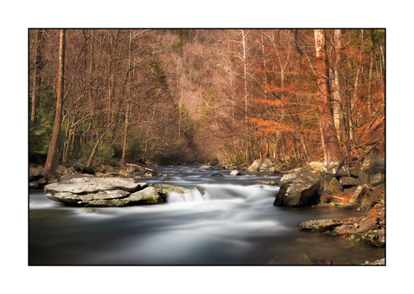 Torrent tumultueux dans les Smoky Mountains au Tennessee.