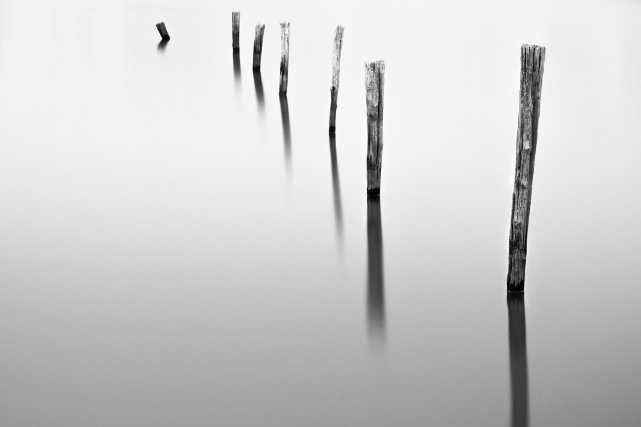 Conceptual photograph of stakes in a flooded meadow. Photograph in high key and black and white by Amar Guillen, photographer artist.