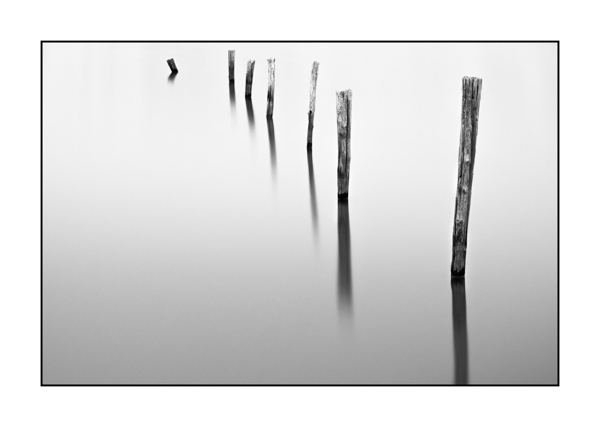Stakes in high key and black and white in a flooded meadow.