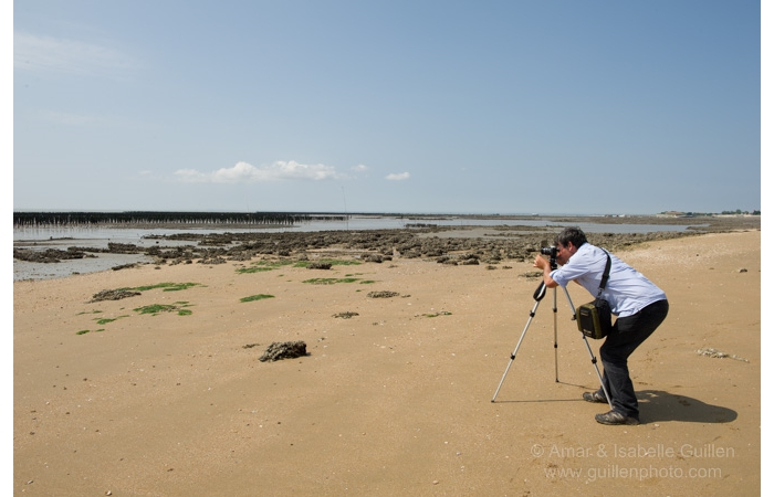 stage-photo-paysage-charente-maritime-amar-guillen-12