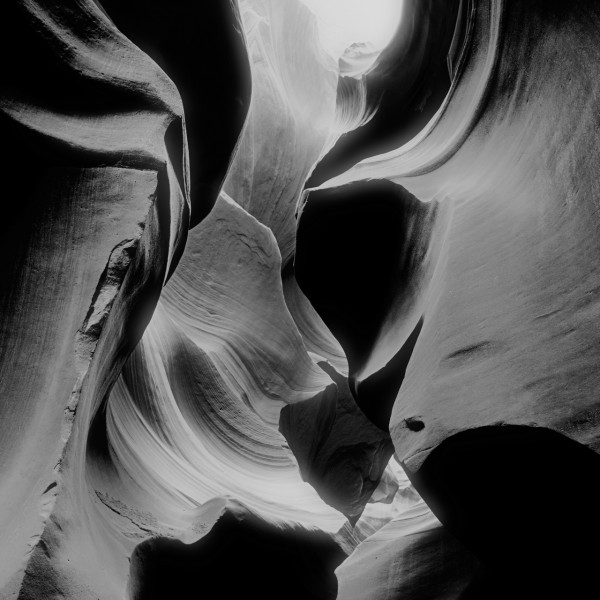 Conceptual photograph of nature in black and white by Amar Guill