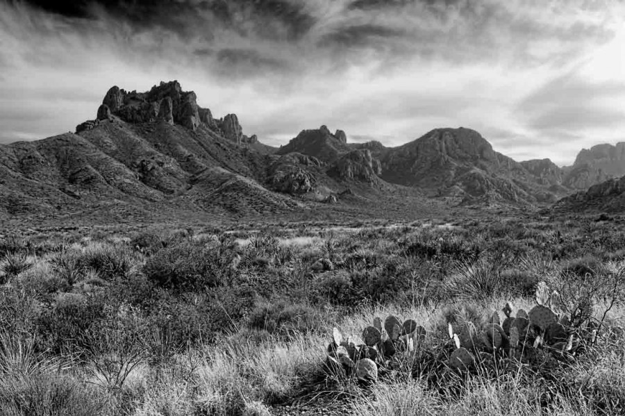 Landscape in black and white of Texas by Amar Guillen, photograp